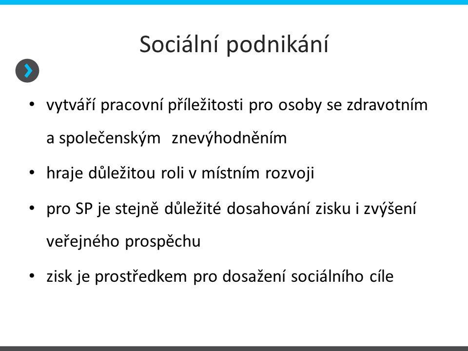 Sociální podnikání vytváří pracovní příležitosti pro osoby se zdravotním a společenským znevýhodněním.