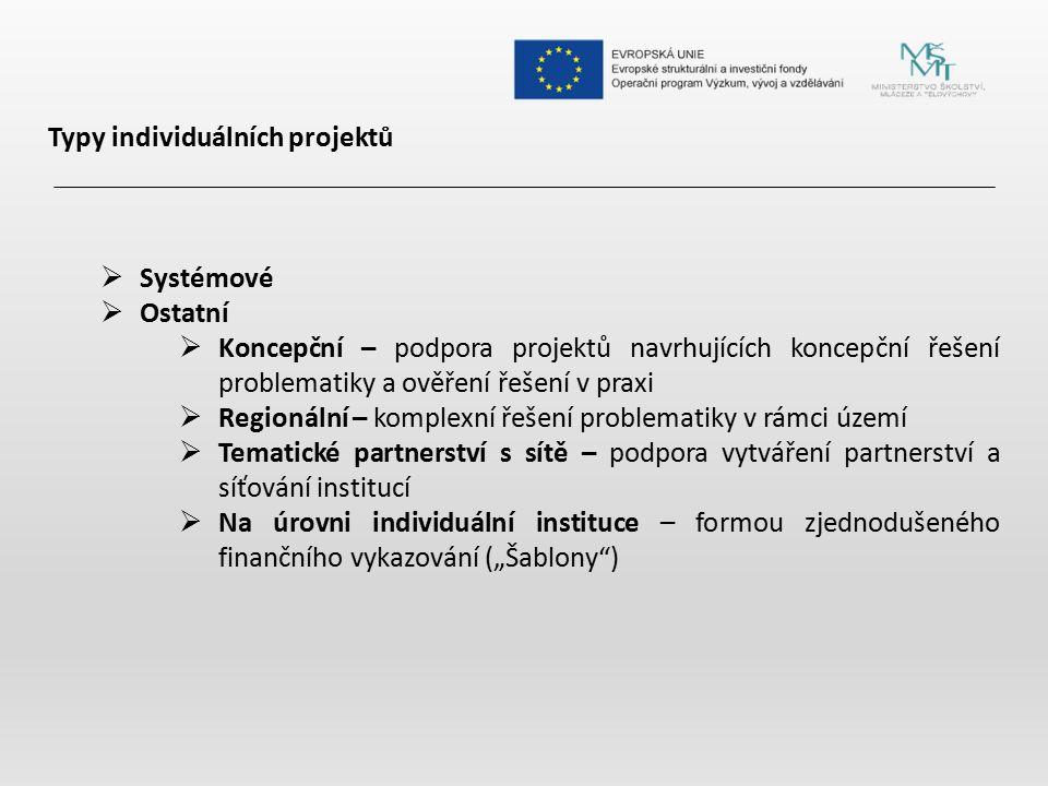 Typy individuálních projektů