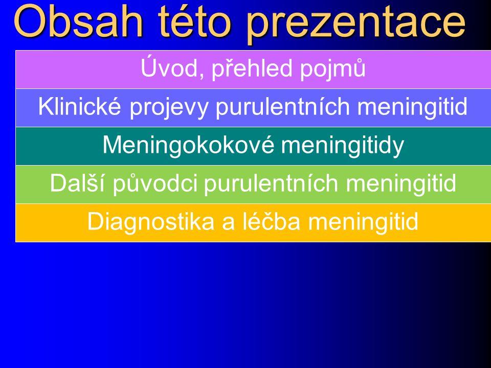 Obsah této prezentace Úvod, přehled pojmů