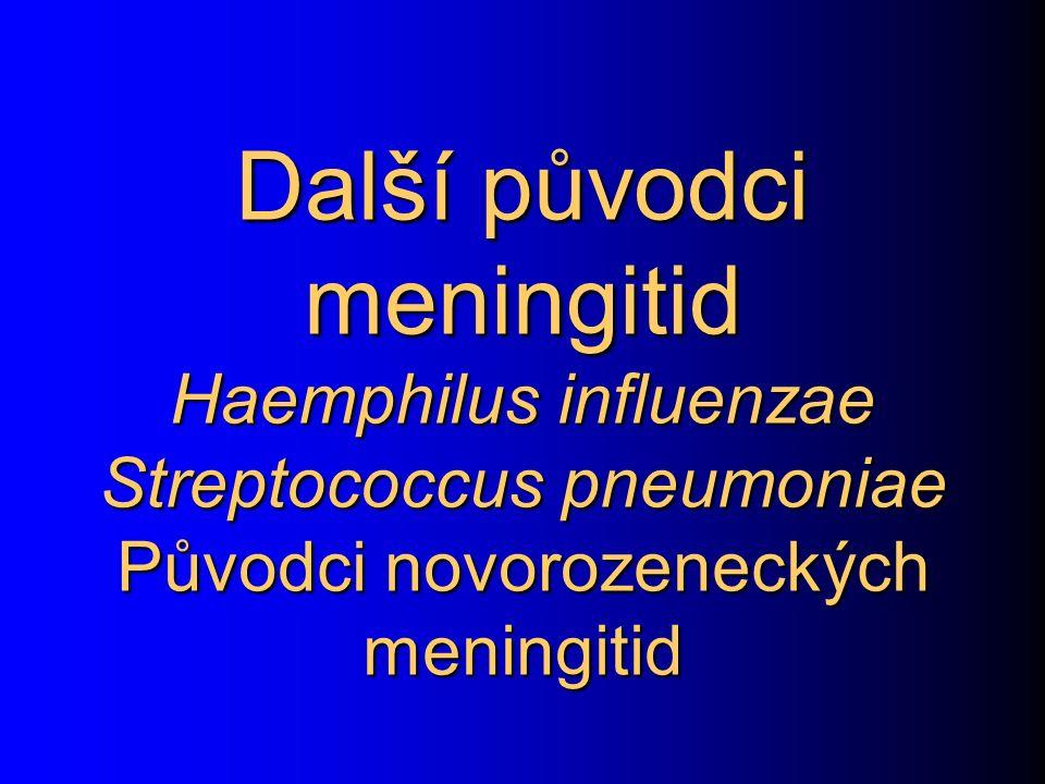 Další původci meningitid Haemphilus influenzae Streptococcus pneumoniae Původci novorozeneckých meningitid