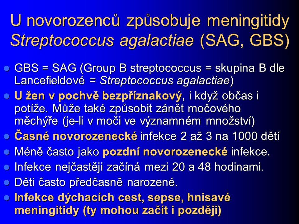 U novorozenců způsobuje meningitidy Streptococcus agalactiae (SAG, GBS)