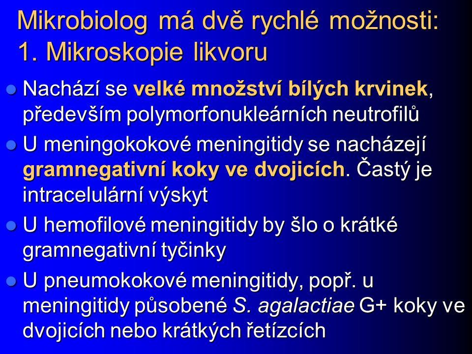 Mikrobiolog má dvě rychlé možnosti: 1. Mikroskopie likvoru