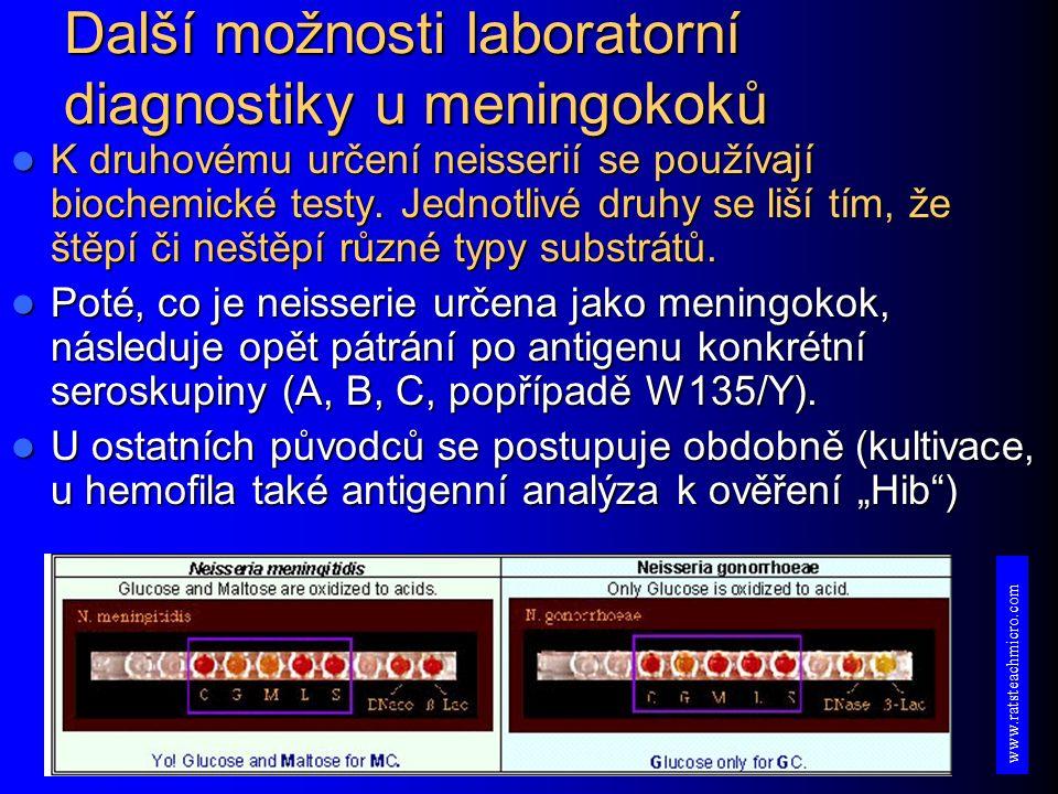 Další možnosti laboratorní diagnostiky u meningokoků