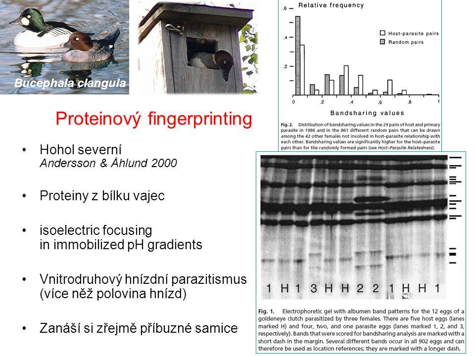 Proteinový fingerprinting