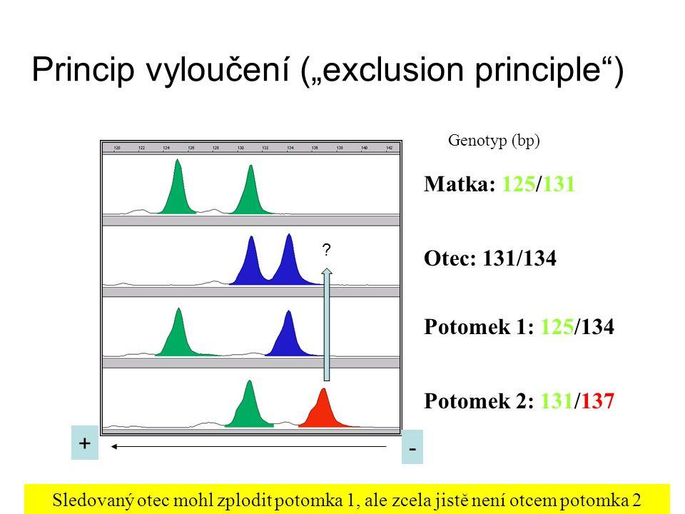 "Princip vyloučení (""exclusion principle )"