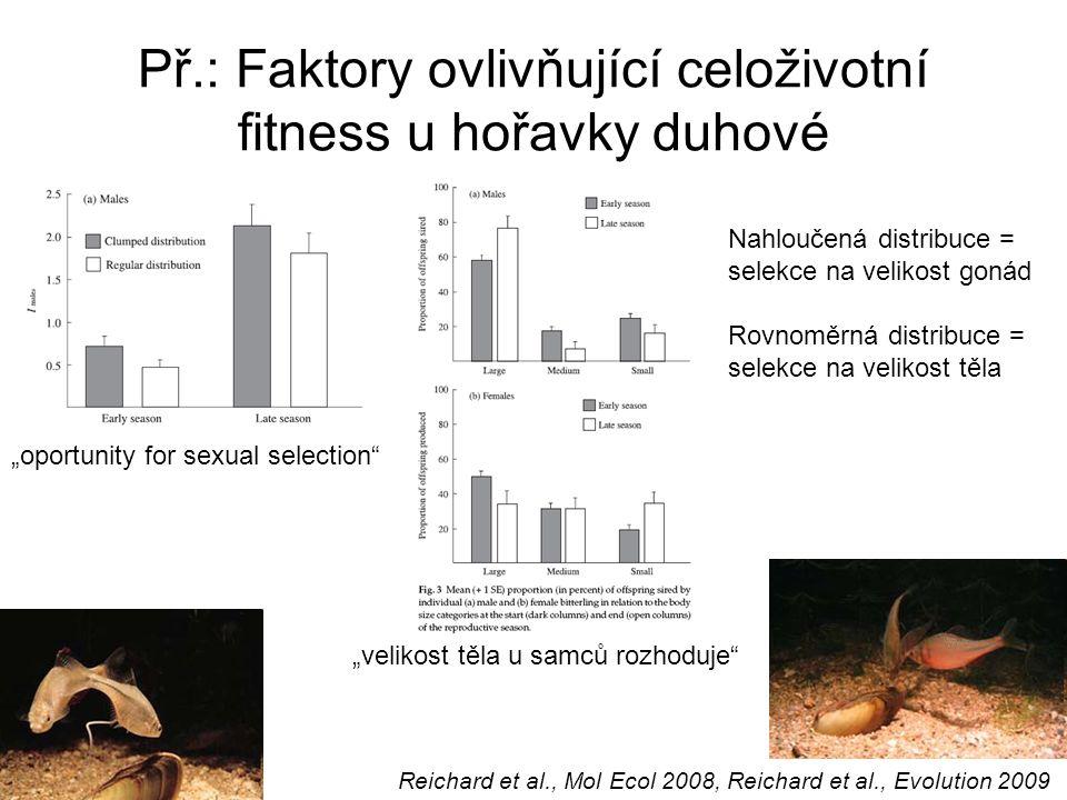 Př.: Faktory ovlivňující celoživotní fitness u hořavky duhové