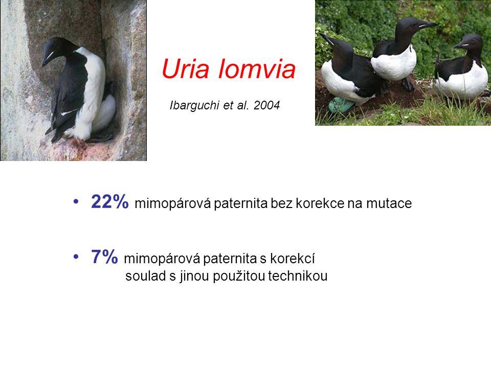 Uria lomvia 22% mimopárová paternita bez korekce na mutace
