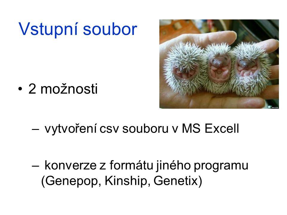 Vstupní soubor 2 možnosti vytvoření csv souboru v MS Excell