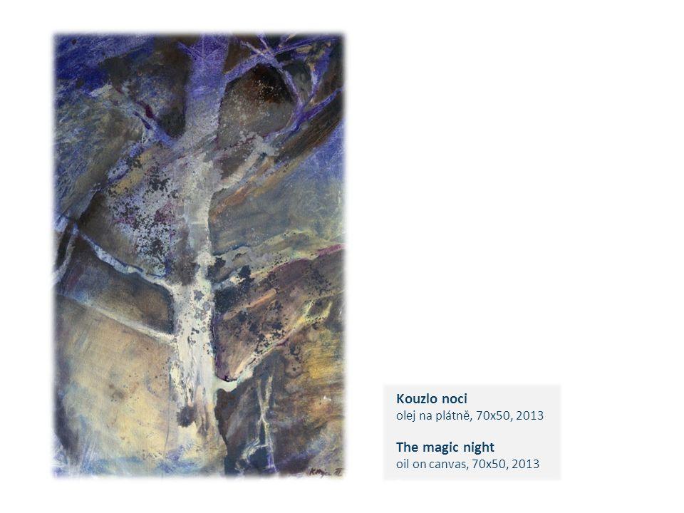 Kouzlo noci olej na plátně, 70x50, 2013