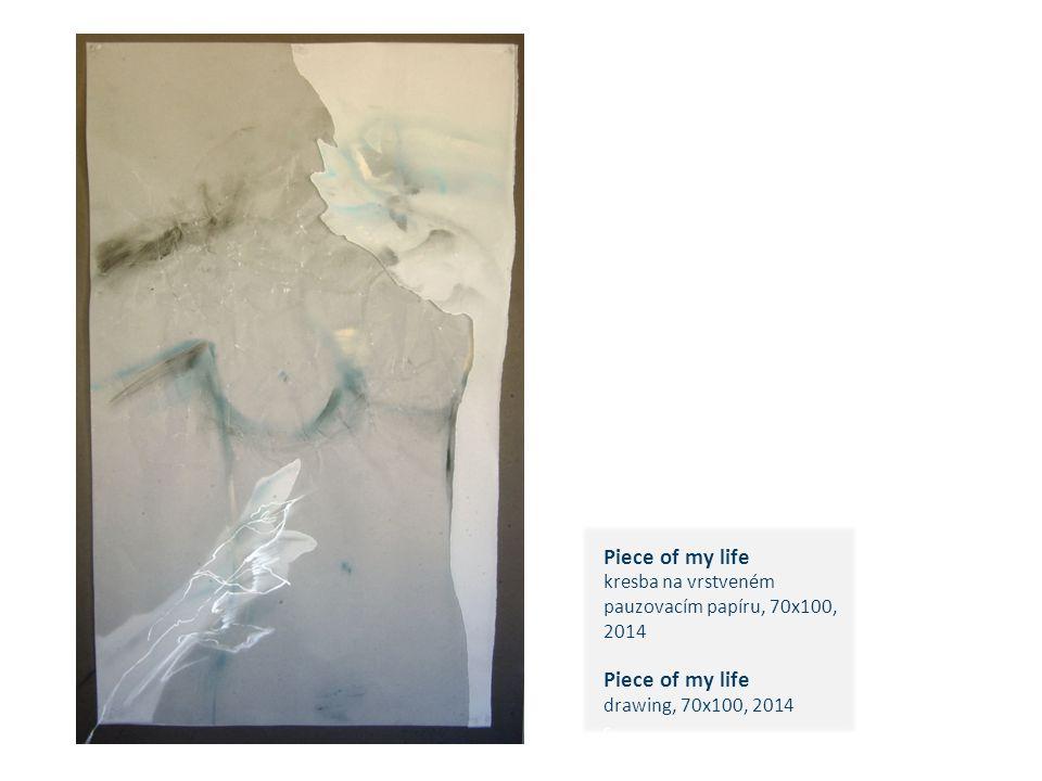 Piece of my life kresba na vrstveném pauzovacím papíru, 70x100, 2014