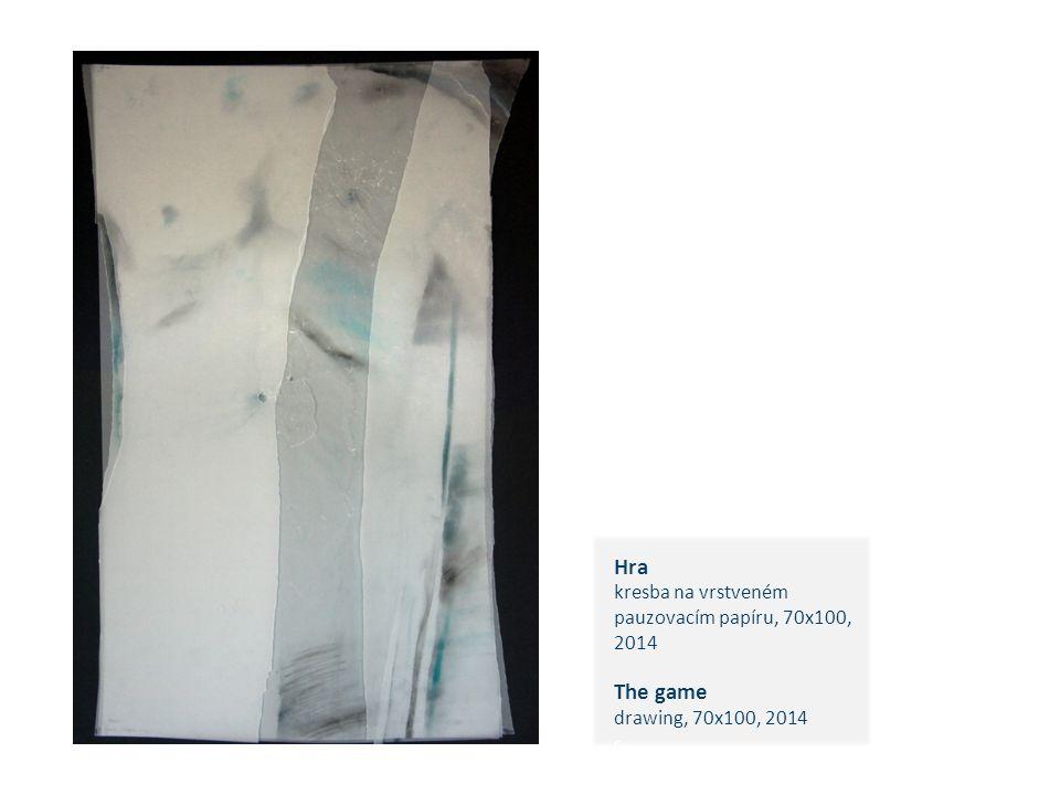 Hra kresba na vrstveném pauzovacím papíru, 70x100, 2014