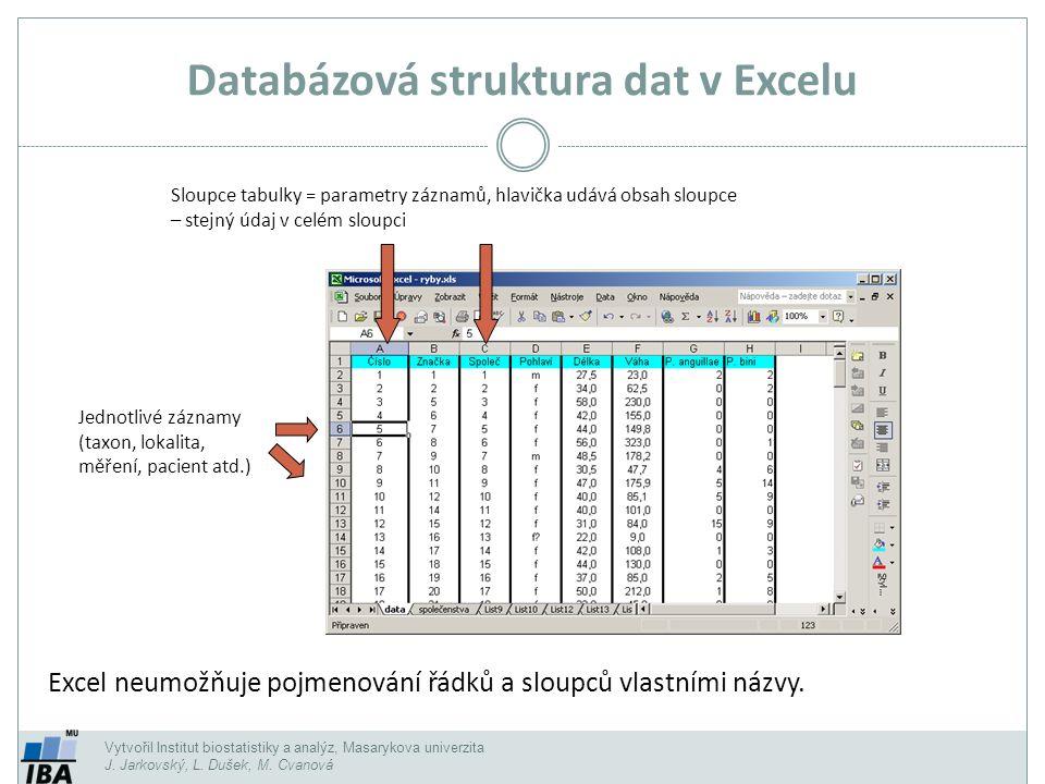Databázová struktura dat v Excelu