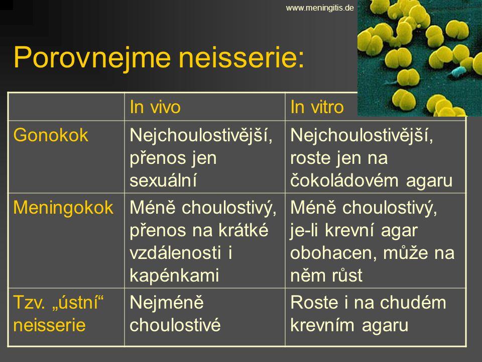 Porovnejme neisserie: