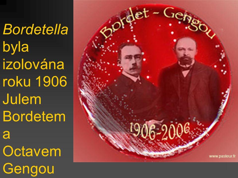 Bordetella byla izolována roku 1906 Julem Bordetem a Octavem Gengou
