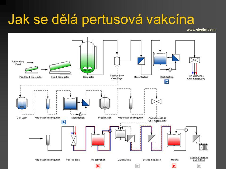 Jak se dělá pertusová vakcína