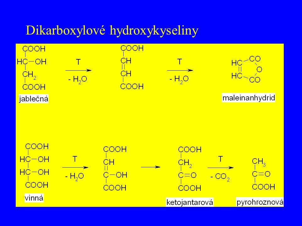 Dikarboxylové hydroxykyseliny
