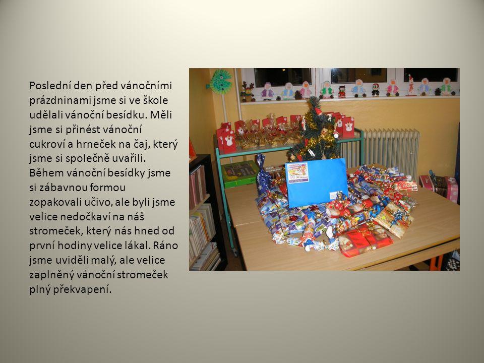 Poslední den před vánočními prázdninami jsme si ve škole udělali vánoční besídku.