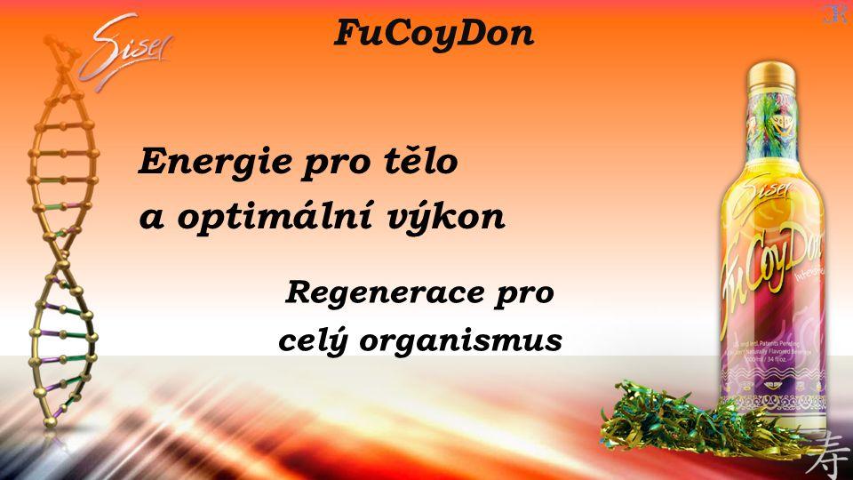 Energie pro tělo a optimální výkon