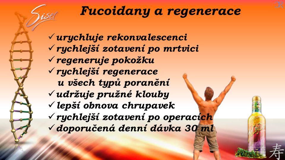 Fucoidany a regenerace