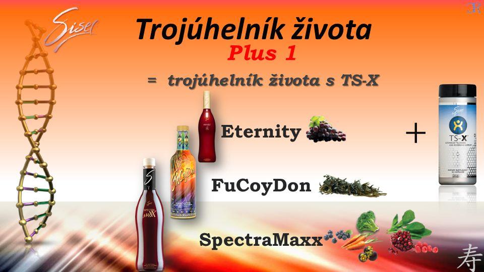 = trojúhelník života s TS-X