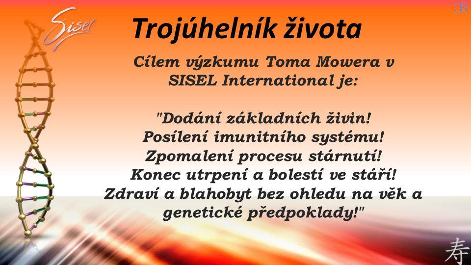 Trojúhelník života Cílem výzkumu Toma Mowera v SISEL International je:
