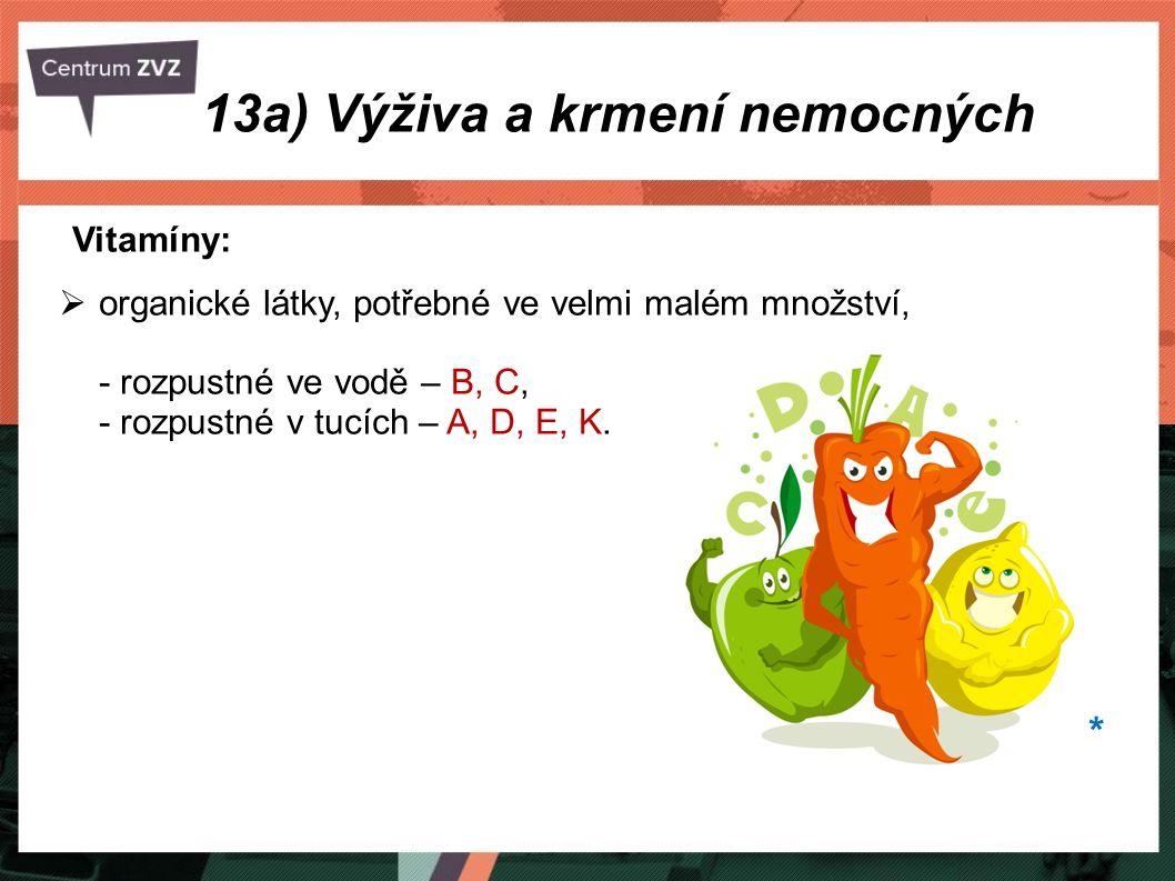 13a) Výživa a krmení nemocných