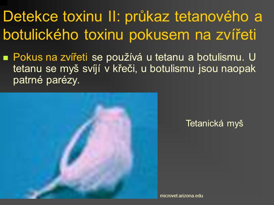 Detekce toxinu II: průkaz tetanového a botulického toxinu pokusem na zvířeti
