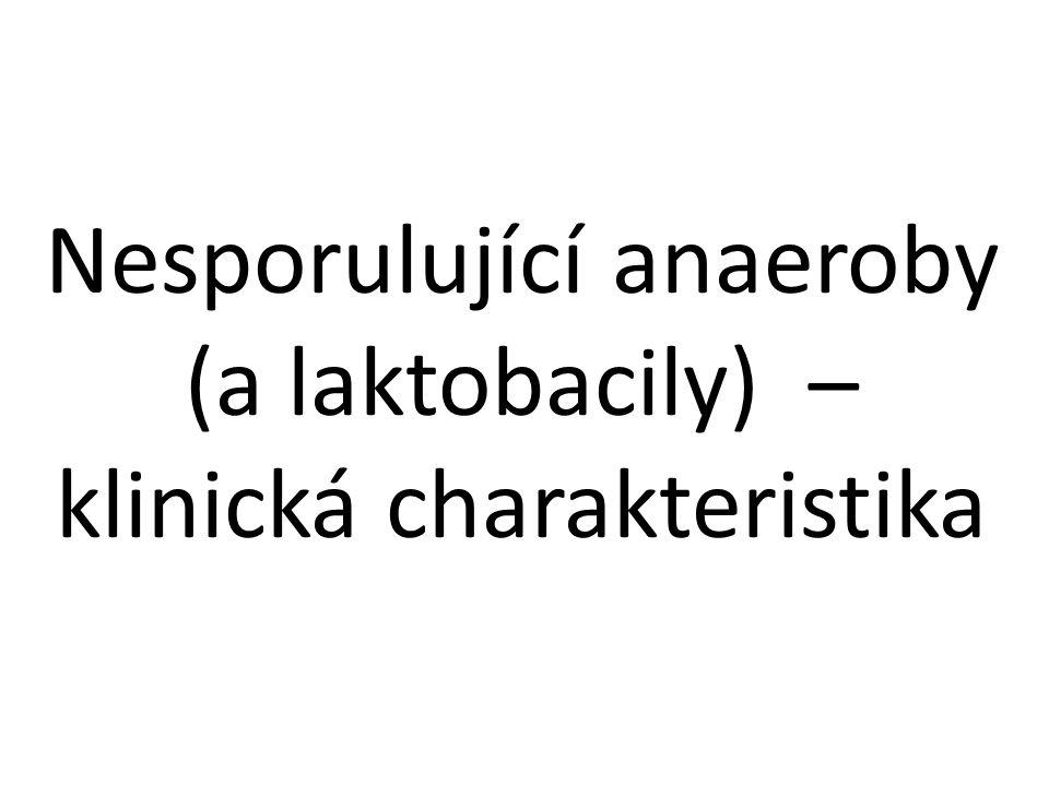 Nesporulující anaeroby (a laktobacily) – klinická charakteristika