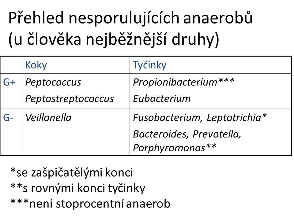 Přehled nesporulujících anaerobů (u člověka nejběžnější druhy)