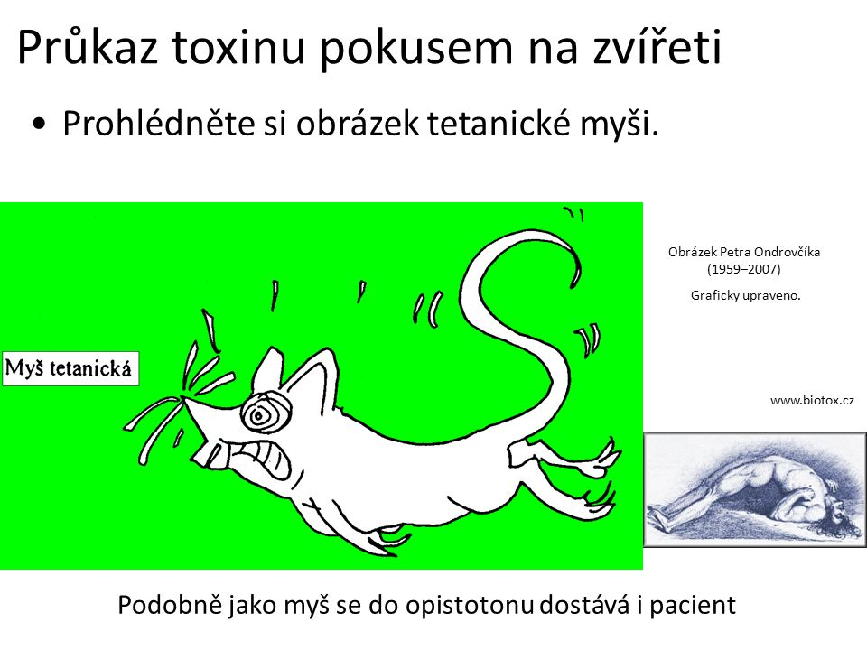 Průkaz toxinu pokusem na zvířeti