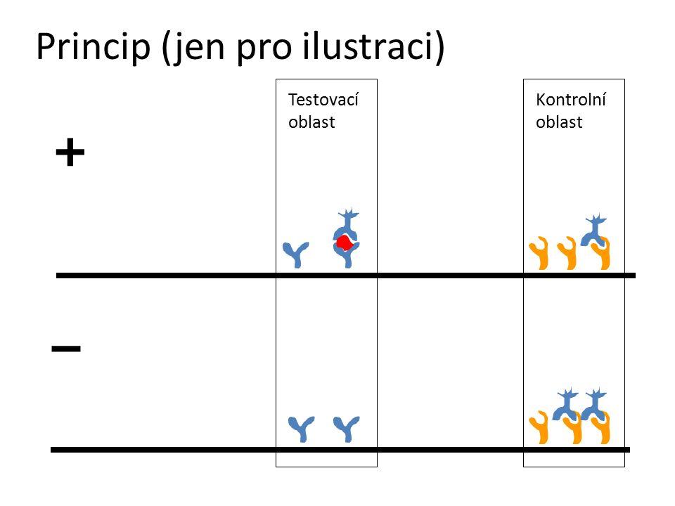 Princip (jen pro ilustraci)