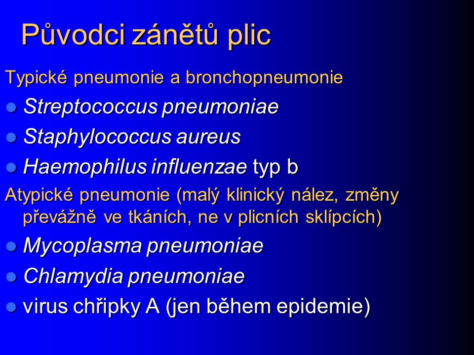 Původci zánětů plic Streptococcus pneumoniae Staphylococcus aureus