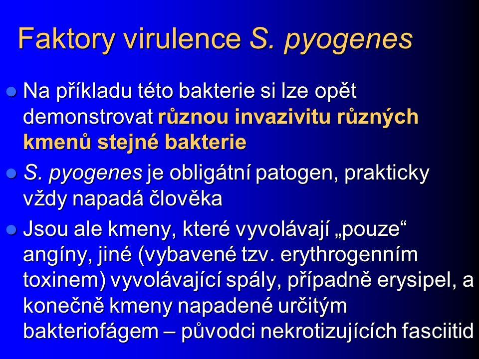 Faktory virulence S. pyogenes