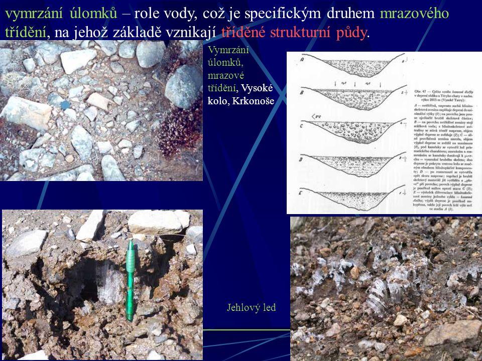 vymrzání úlomků – role vody, což je specifickým druhem mrazového třídění, na jehož základě vznikají tříděné strukturní půdy.