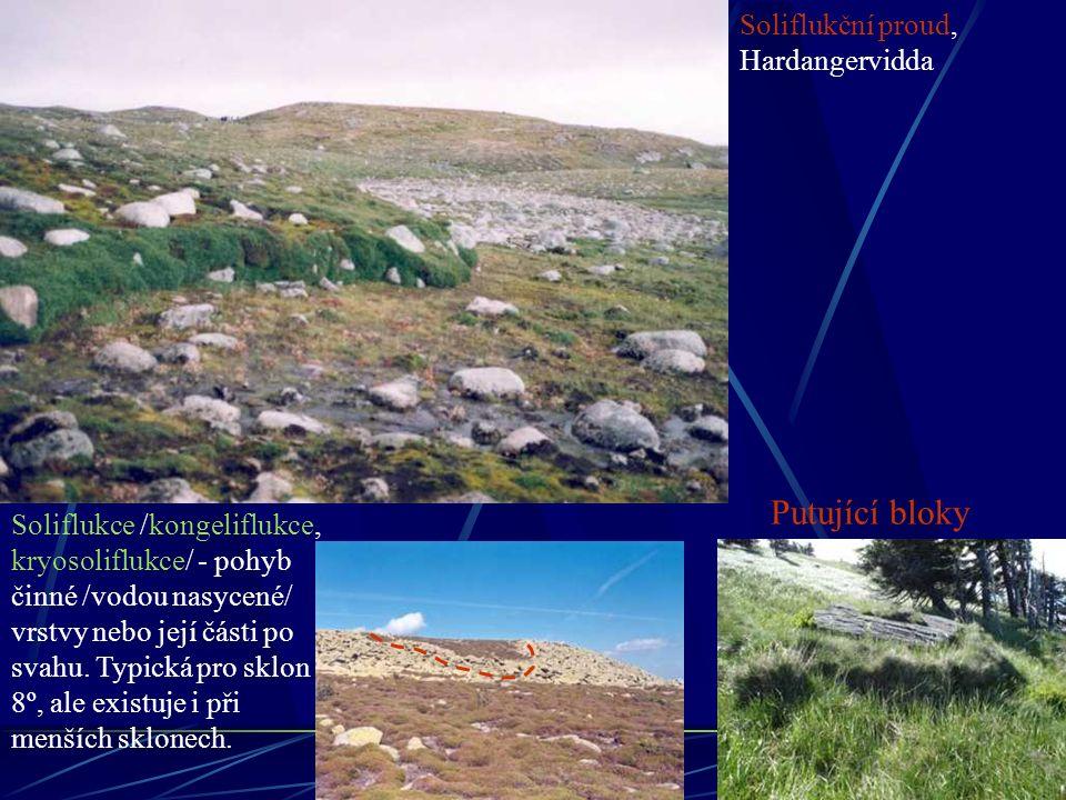 Putující bloky Soliflukční proud, Hardangervidda