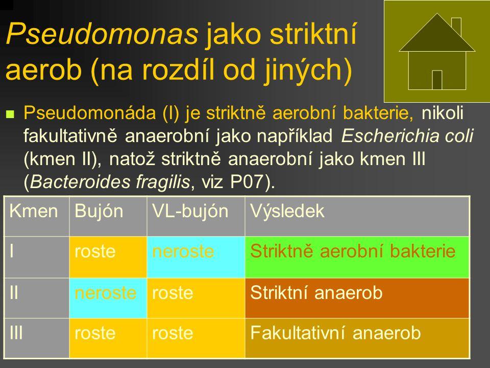 Pseudomonas jako striktní aerob (na rozdíl od jiných)