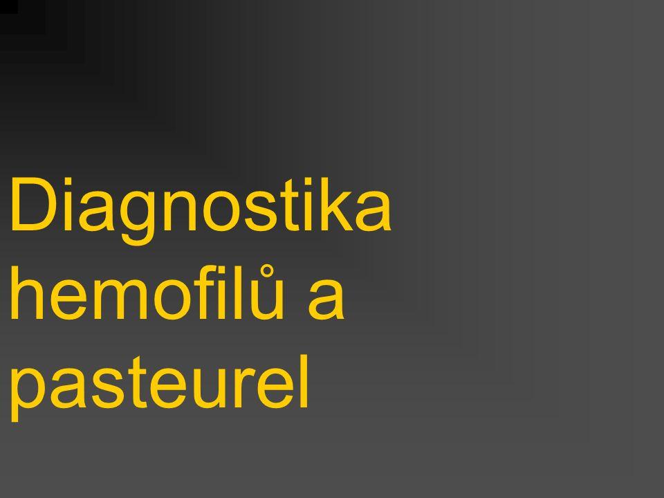Diagnostika hemofilů a pasteurel