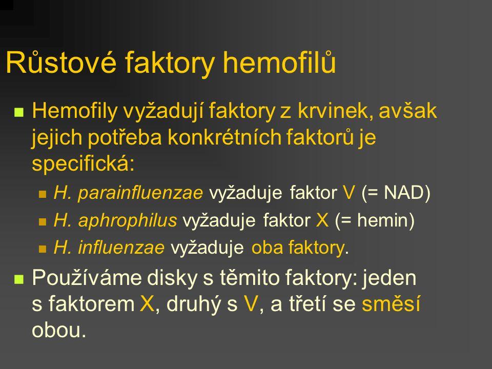 Růstové faktory hemofilů