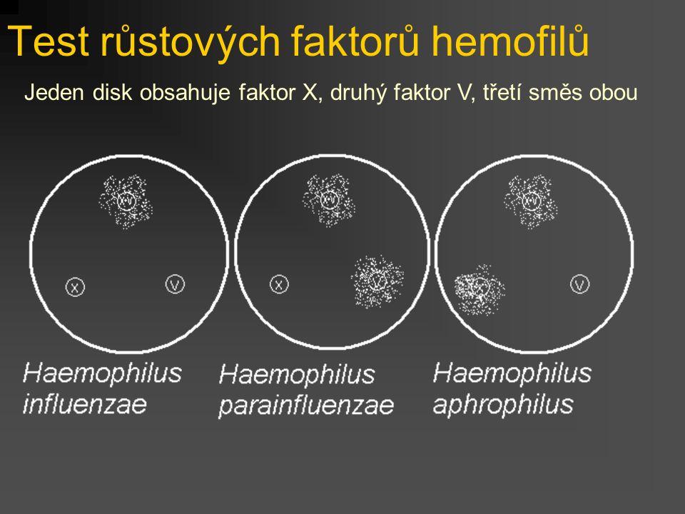 Test růstových faktorů hemofilů