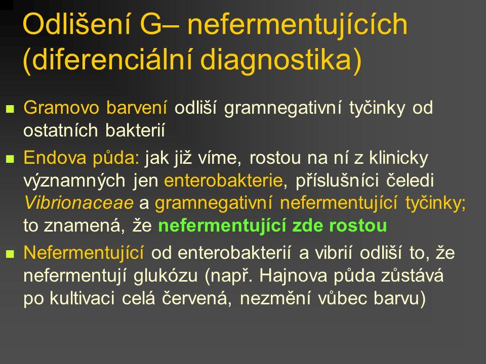 Odlišení G– nefermentujících (diferenciální diagnostika)