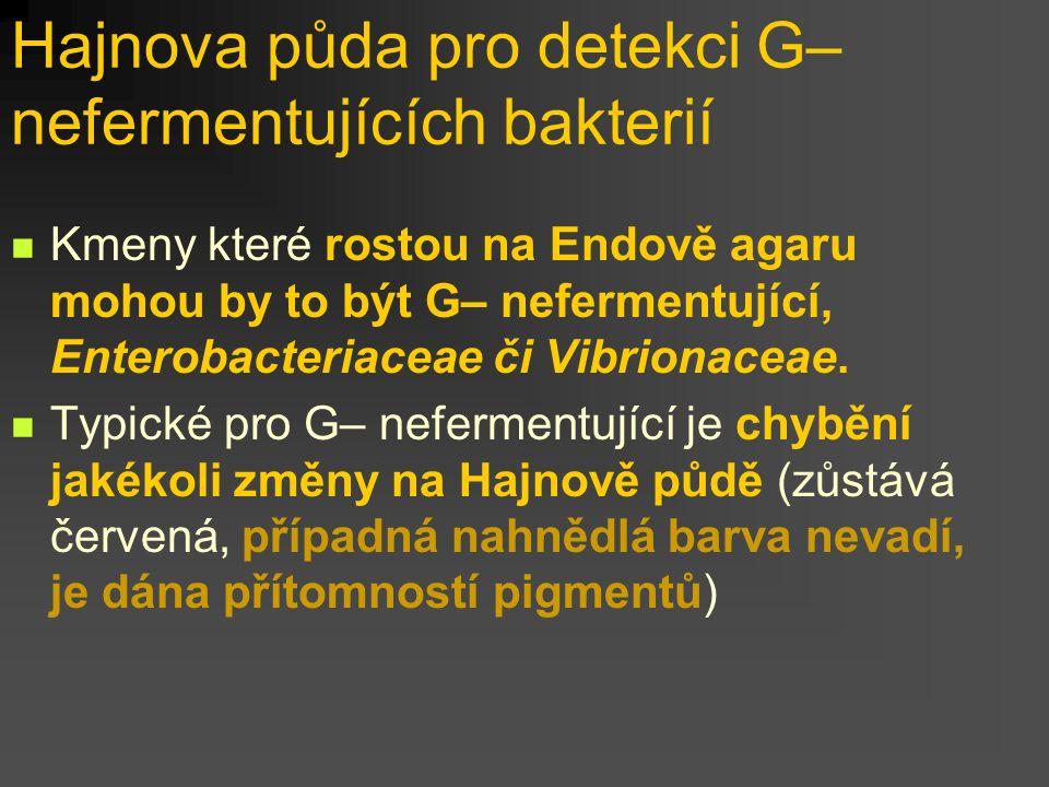Hajnova půda pro detekci G– nefermentujících bakterií
