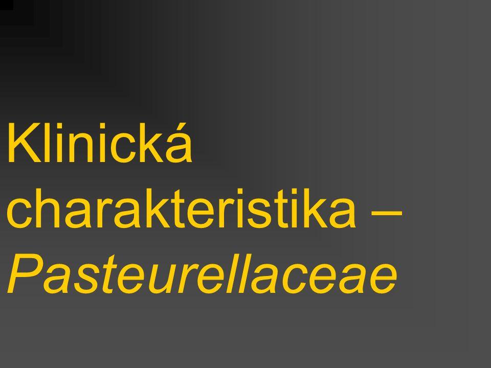 Klinická charakteristika – Pasteurellaceae