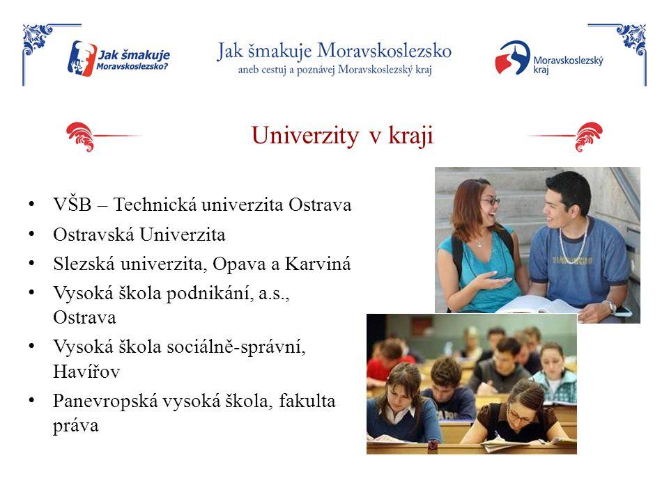 Univerzity v kraji VŠB – Technická univerzita Ostrava