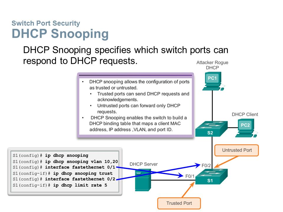 Switch Port Security DHCP Snooping