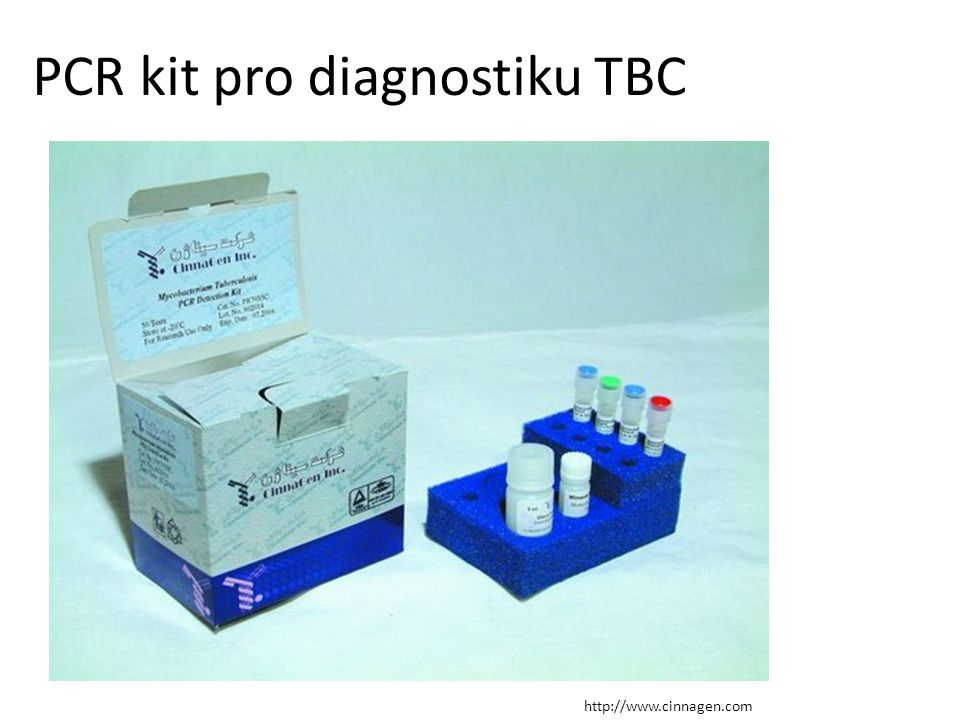PCR kit pro diagnostiku TBC