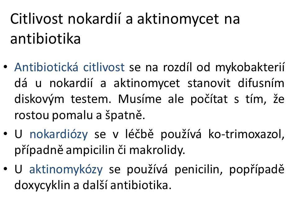Citlivost nokardií a aktinomycet na antibiotika