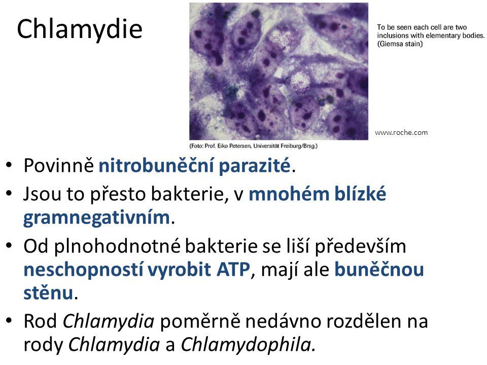 Chlamydie Povinně nitrobuněční parazité.