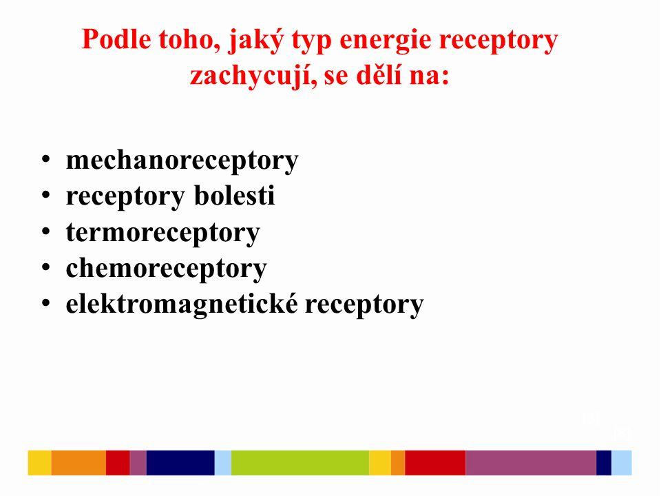 Podle toho, jaký typ energie receptory zachycují, se dělí na: