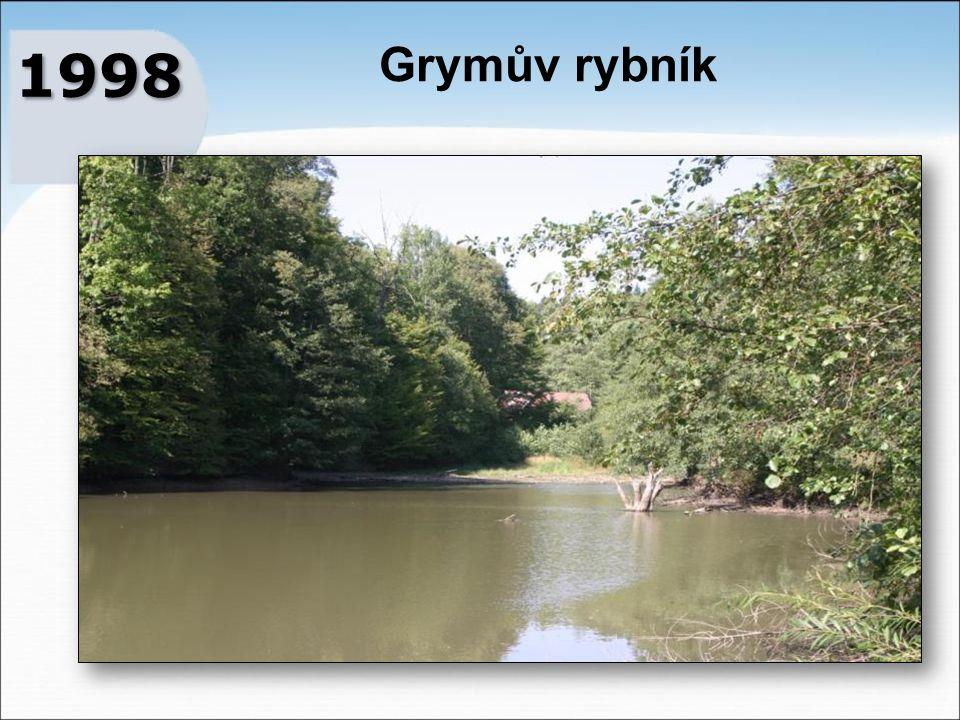 Grymův rybník 1998