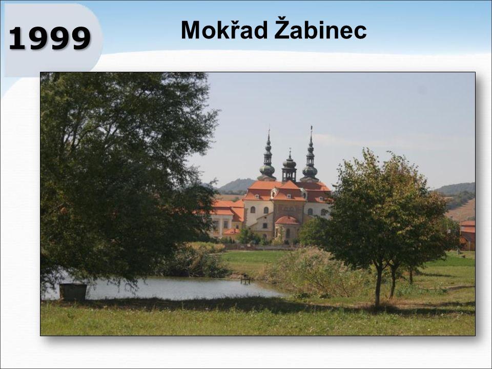 Mokřad Žabinec 1999